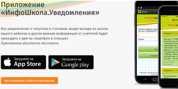 Приложение на телефон Инфошкола